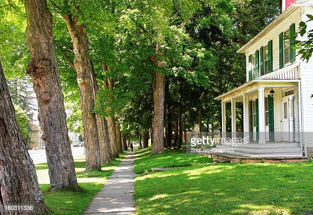 tree lined sidewalk in a small town - shade stock pictures, royalty-free photos & images