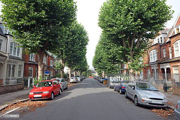 tree lined street, uk - street stock pictures, royalty-free photos & images