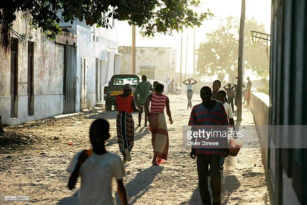 tree lined streets of ilha de mozambique - mozambique stock pictures, royalty-free photos & images