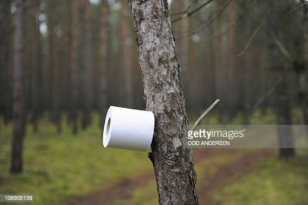 A tree makes for a toilet paper holder as anti nuclear protestor against the transport and storage of nuclear waste wake up at their blockade after...