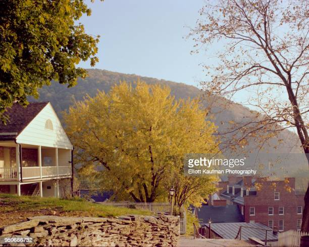 tree next to house building in west virginia - protohistory_of_west_virginia stock pictures, royalty-free photos & images