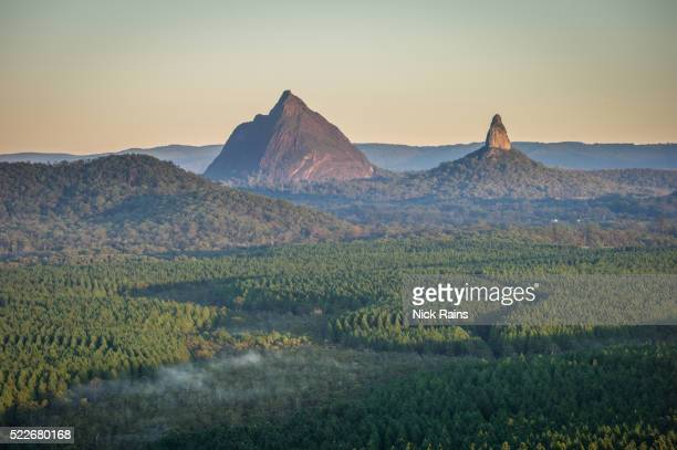 tree plantations and forestry - glass house mountains stock pictures, royalty-free photos & images
