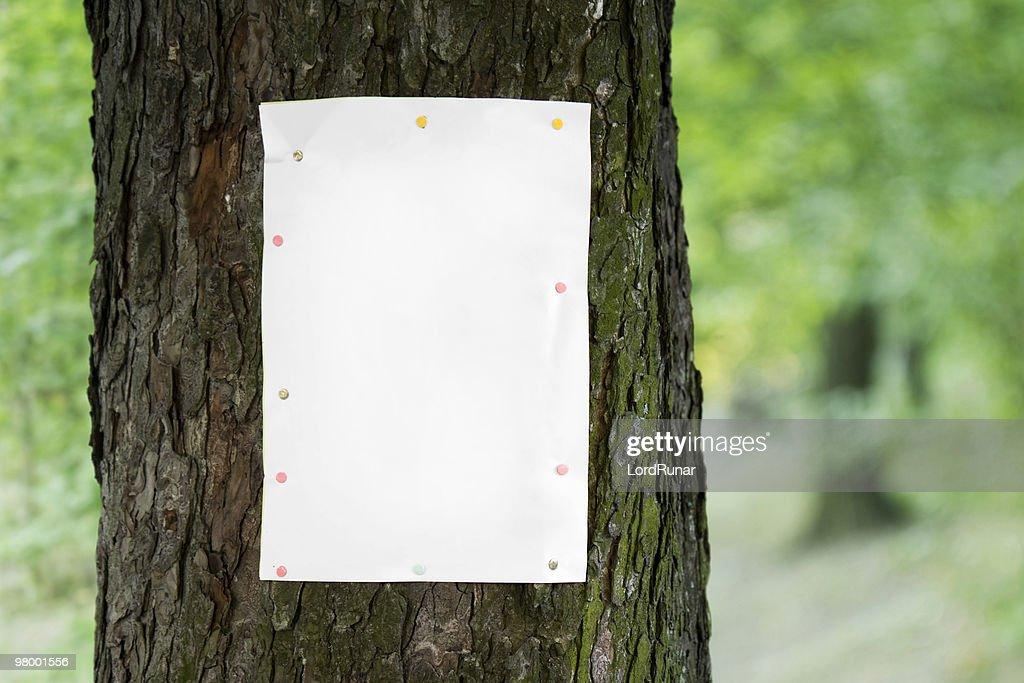 Tree poster : Stock Photo