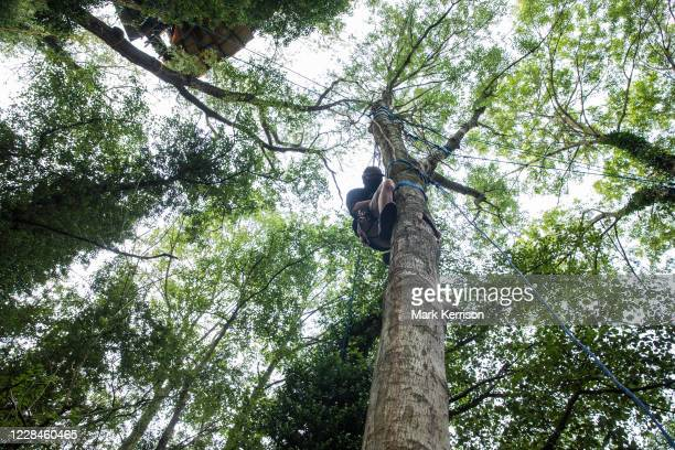 Tree protector from HS2 Rebellion climbs a tree at Denham Protection Camp on 11 September 2020 in Denham, United Kingdom. Anti-HS2 activists continue...