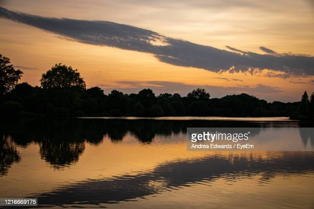 tree reflections in a still lake at sunset - lake stock pictures, royalty-free photos & images