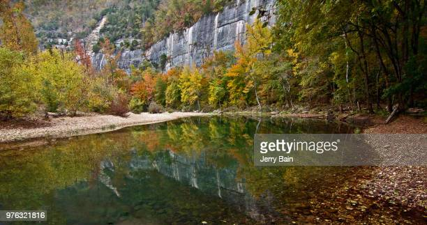 tree reflections on buffalo river, arkansas, usa - arkansas stock pictures, royalty-free photos & images