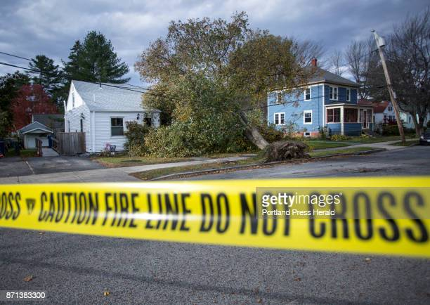 A tree rests against a house belonging to Danice Jacobson on Westminster Ave in Portland on Tuesday Oct 31 2017 Jacobson who is disabled has been...
