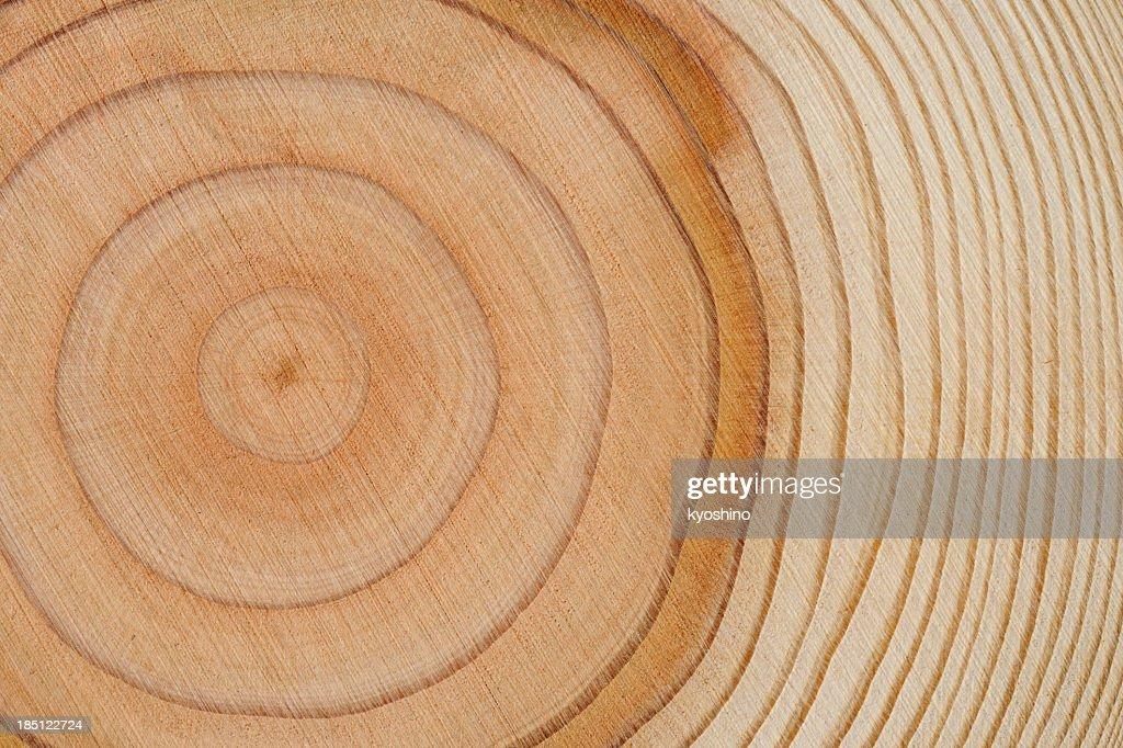 Tree rings texture background : Bildbanksbilder