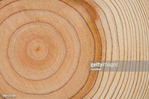 tree rings texture background - cross section stock pictures, royalty-free photos & images