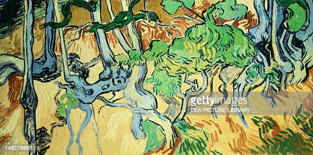 Tree roots and trunks by Vincent van Gogh Amsterdam Van Gogh Museum