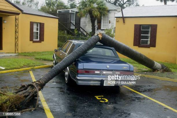 A tree smashed into a car from the aftermath of Hurricane Frances 05 September 2004 in Ft Pierce Florida Residents of Florida's Atlantic coast...