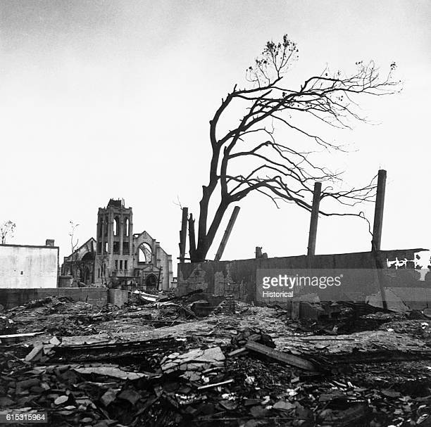 A tree stripped of its leaves stands amid rubble and the shells of buildings after the atomic blast that destroyed Hiroshima on August 6 1945