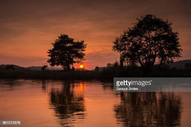 Tree Sunset Silhouette