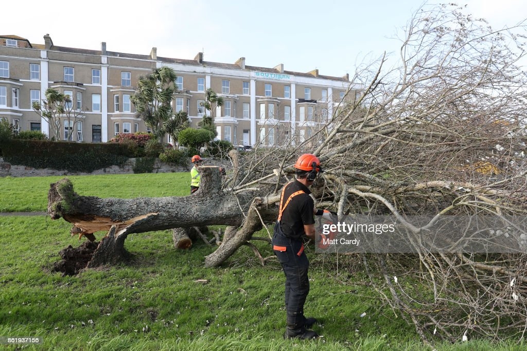 A tree surgeon cuts up a fallen tree in Penzance on October 16, 2017 in Cornwall, England. The hurricane comes exactly 30 years after the Great Storm of 1987 which killed 18 people and is estimated to have caused £1bn in damage to property and infrastructure.