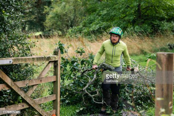 tree surgeon pulling tree branches through gate - ground staff stock pictures, royalty-free photos & images