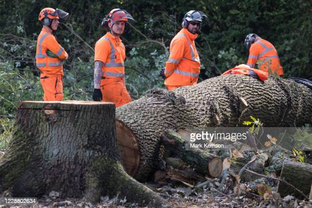 Tree surgeons working on behalf of HS2 Ltd fell trees in Denham Country Park for works connected to the HS2 high-speed rail link on 29 September 2020...
