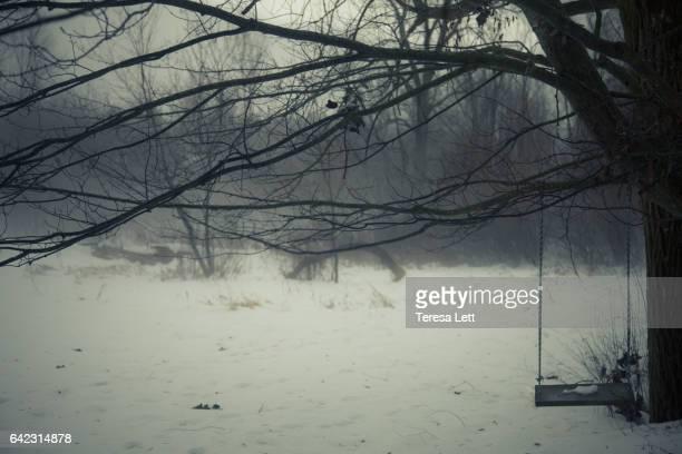 Tree swing in winter