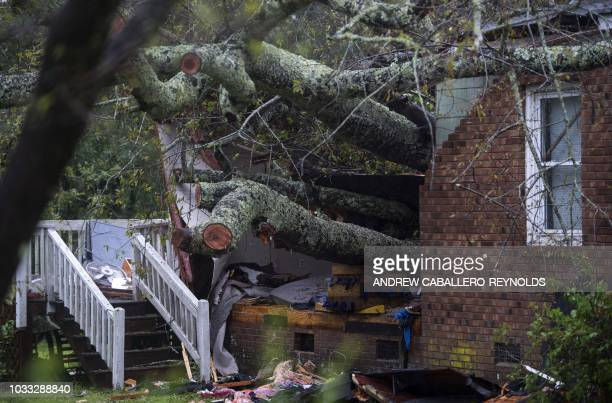 TOPSHOT A tree that fell on a house killing two people is seen during Hurricane Florence in Wilmington North Carolina on September 14 2018 A mother...