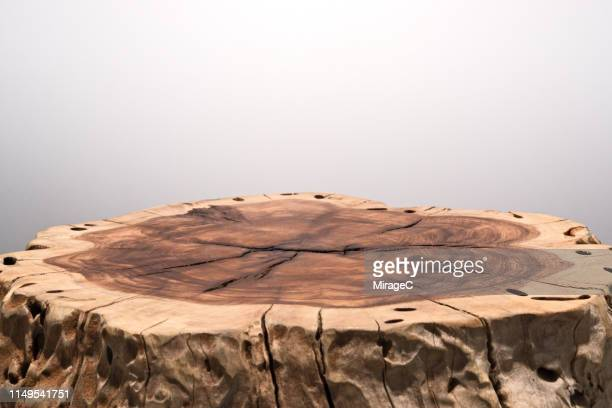tree trunk slice surface - tree stump stock pictures, royalty-free photos & images