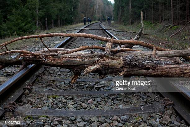 Tree trunks lie on the railtracks that will be used to transport nuclear waste on November 25 2011 in Leitstade near Metzingen Germany A train...