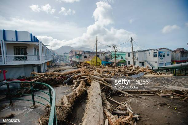 Tree trunks litter a street September 22 2017 in Roseau capital of the Caribbean island of Dominica four days after the passage of Hurricane Maria...
