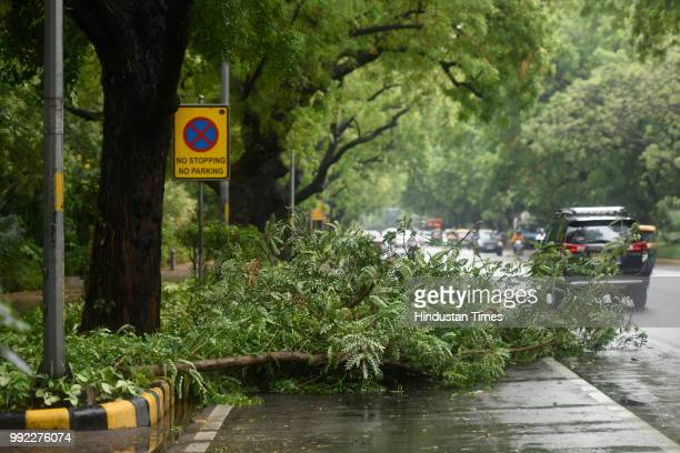 A tree uprooted due to heavy monsoon rain at Prithviraj road on July 5 2018 in New Delhi India
