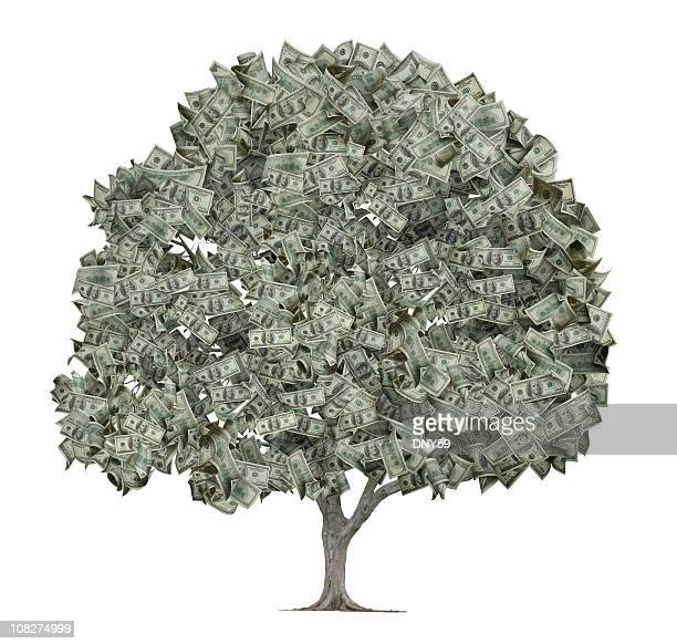 tree with leaves made out of hundred dollar bills - money tree stock photos and pictures