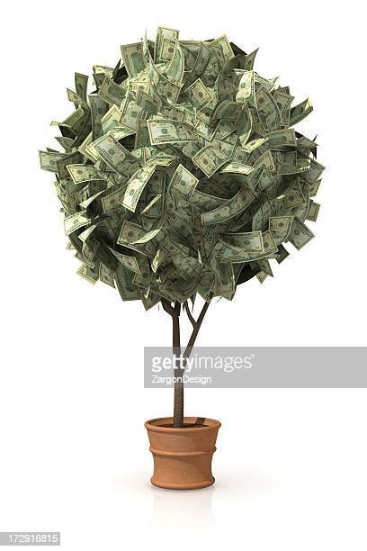 A tree with money in place of leaves