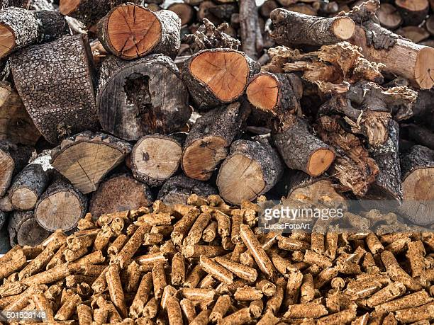 tree wood-pellet biomass - grânulo imagens e fotografias de stock