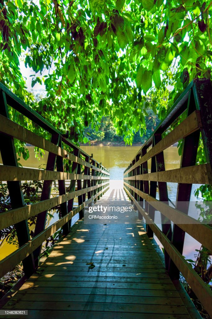 Tree-covered pier for access to the river on a sunny day. : Stock Photo