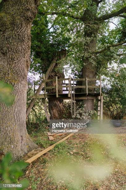 treehouse from a distance - kamperen stock pictures, royalty-free photos & images