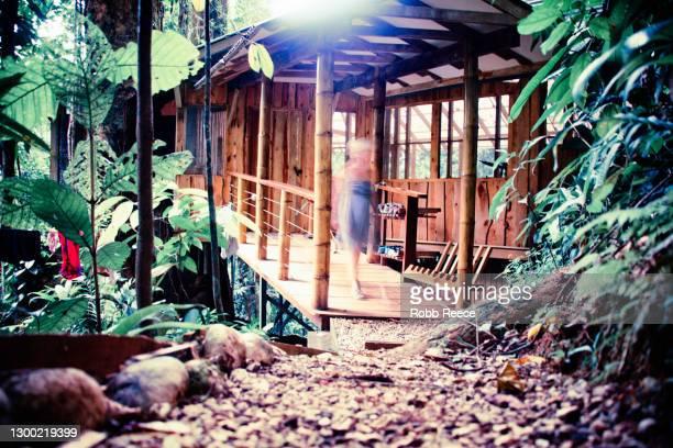 a treehouse in costa rican tropical jungle - robb reece stock-fotos und bilder