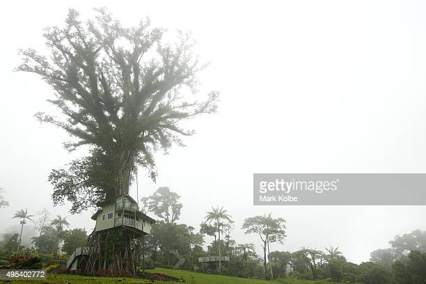 A treehouse is seen at the Lupe Sina Treesort Hotel on September 12 2015 in Apia Samoa The Lupe Sina treehouse hotels are located in the hills of...