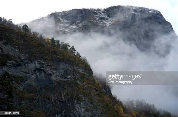 Treeline Above The Aurlandsfjord, Norway