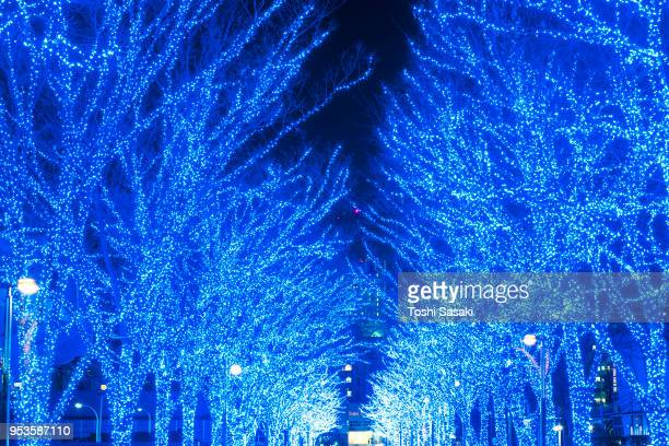 Tree-lined Blue Cave (Ao No Dokutsu) Keyaki Namiki (Zelkova tree–lined) stands in the night along both side of the path, which are illuminated by million of blue LED lights at Yoyogi Park Shibuya Tokyo Japan on 07 December 2017.