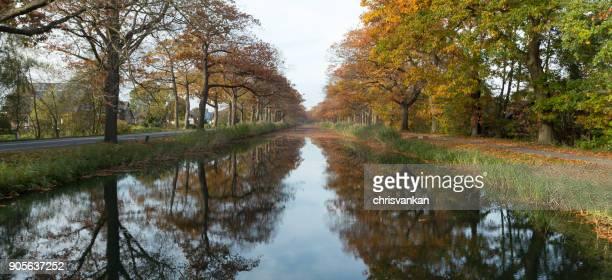 Treelined river in autumn, Gelderland, Holland