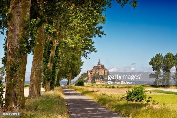 tree-lined walking path leading to the abbey of mont saint-michel - abby road stock photos and pictures