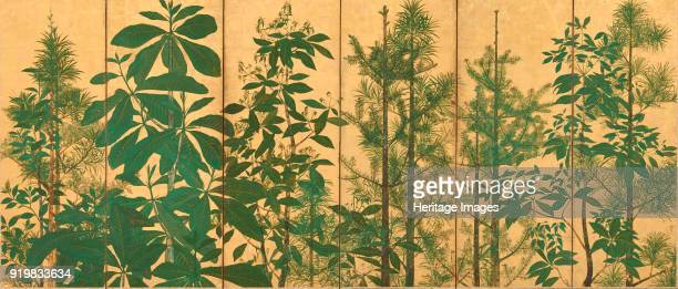 Trees A sixsection folding screens Mid of 17th cen Found in the collection of Freer Gallery of Art Washington DC