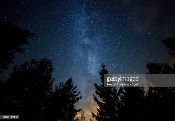 trees against sky at night - teemu tretjakov stock pictures, royalty-free photos & images