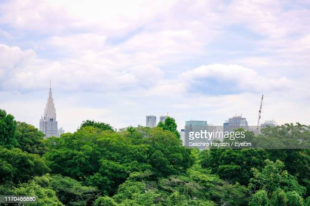 trees and buildings against cloudy sky - seiichiro hayashi ストックフォトと画像