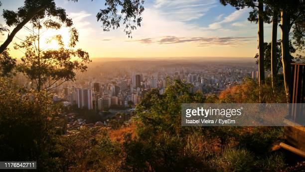 trees and buildings against sky during sunset - belo horizonte stock pictures, royalty-free photos & images