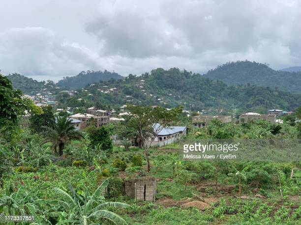 trees and buildings against sky - cameroon stock pictures, royalty-free photos & images