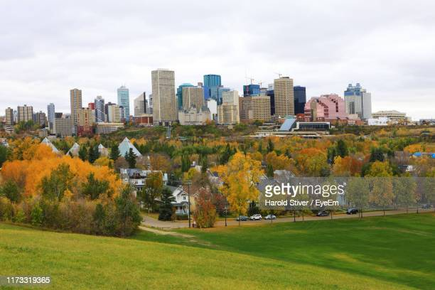 trees and buildings in city against sky - edmonton stock pictures, royalty-free photos & images