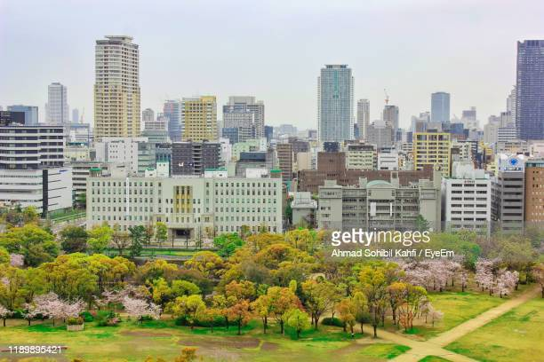 trees and buildings in city against sky - 高層ビル ストックフォトと画像