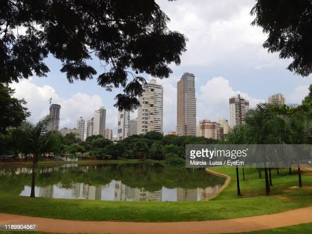 trees and buildings in city against sky - goiania imagens e fotografias de stock