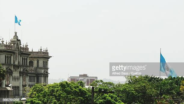 trees and city buildings against clear sky - guatemala city stock pictures, royalty-free photos & images