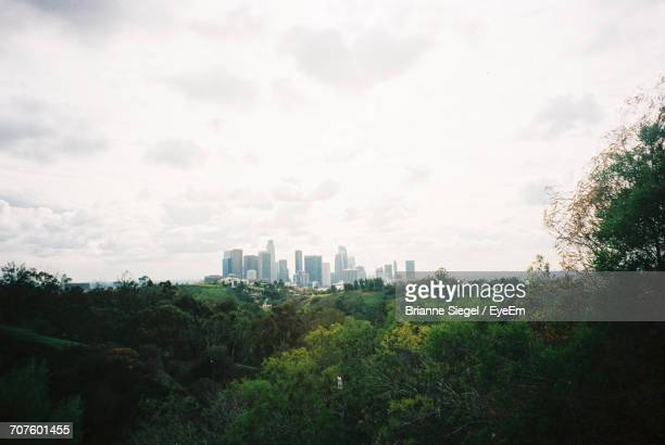 trees and cityscape against sky - brianne stock pictures, royalty-free photos & images