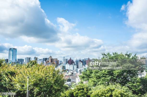 trees and cityscape against sky - 都市景観 ストックフォトと画像