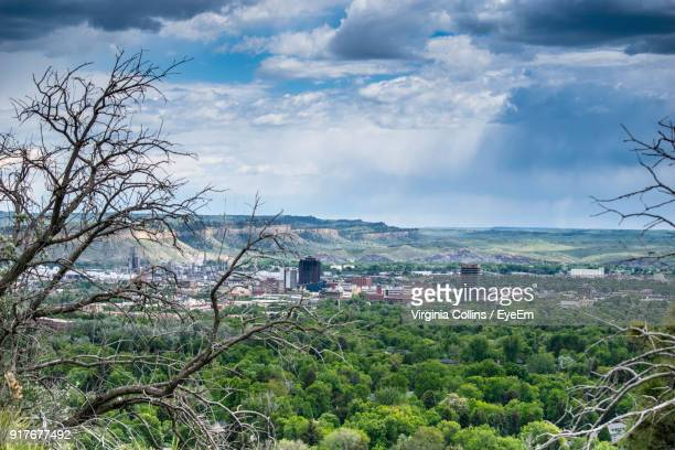 trees and cityscape against sky - billings montana stock pictures, royalty-free photos & images