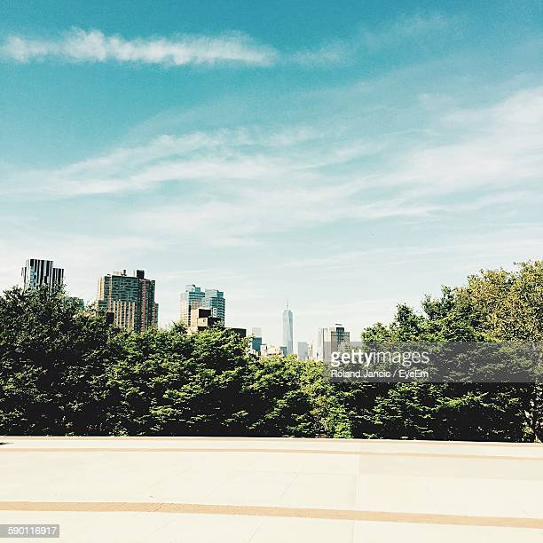 Trees And Cityscape Against Sky Seen Through Fort Greene Park